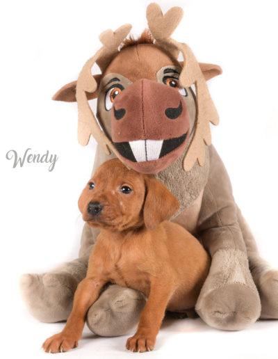 Wendy3